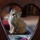 I love you! by vigor