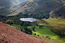 Blea Tarn From Lingmoor Fell by SteveMG