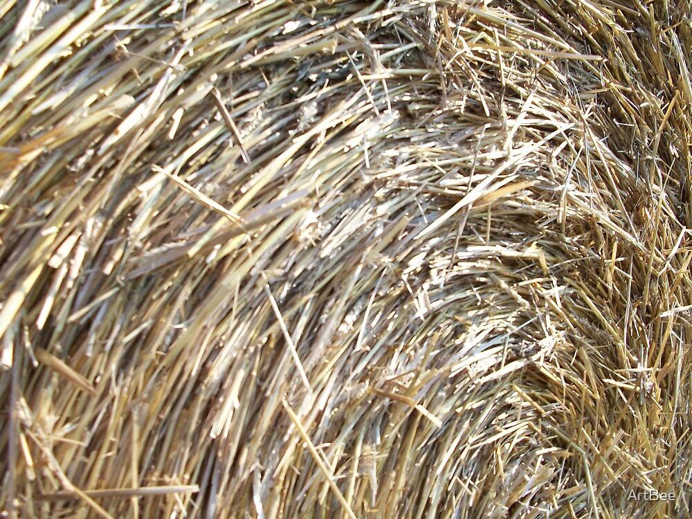 Straw Bale by ArtBee