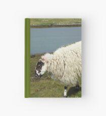Schafe auf der Insel Harris Notizbuch