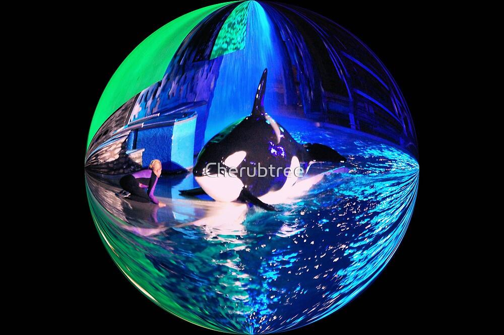 Sea WORLD at Night: by Cherubtree