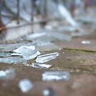 Broken Glass by Melissa Dickson