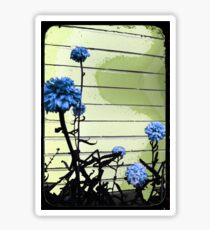 blue carnations Sticker
