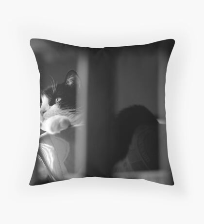 I'll go back to being a dog tomorrow, but for today... Throw Pillow