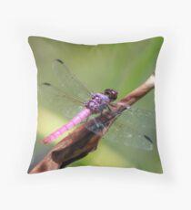 Roseate Skimmer Throw Pillow