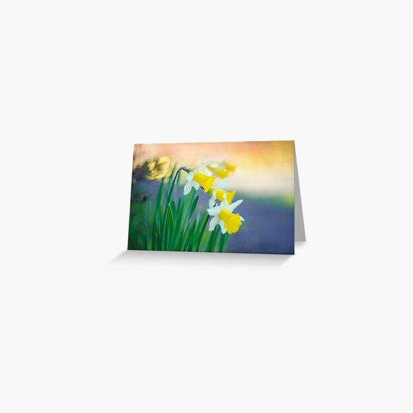 Daffodil Day... Greeting Card