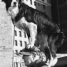 Piggy Back Dog B&W by WolfPause