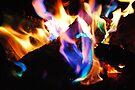 Vivid Color Fire by Tori Snow
