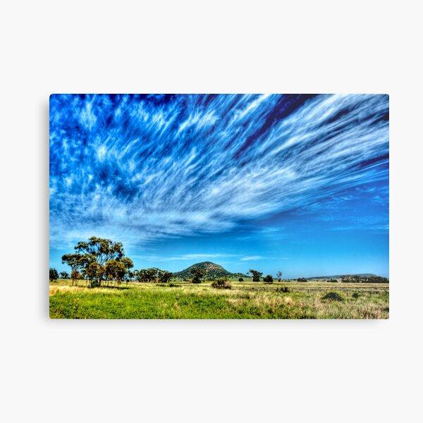 Arboreal Exhalation - Western NSW - Australia Metal Print