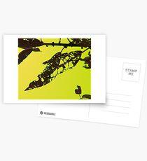Yellow, Chartreuse Window Postcards
