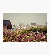 PURPLE HAZE- Peggy's Cove, Nova Scotia Photographic Print