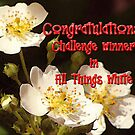 Challenge Banner for All Things White by vigor