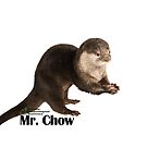 Mr. Chow the Asian Small Clawed Otter by PhoenixHerp