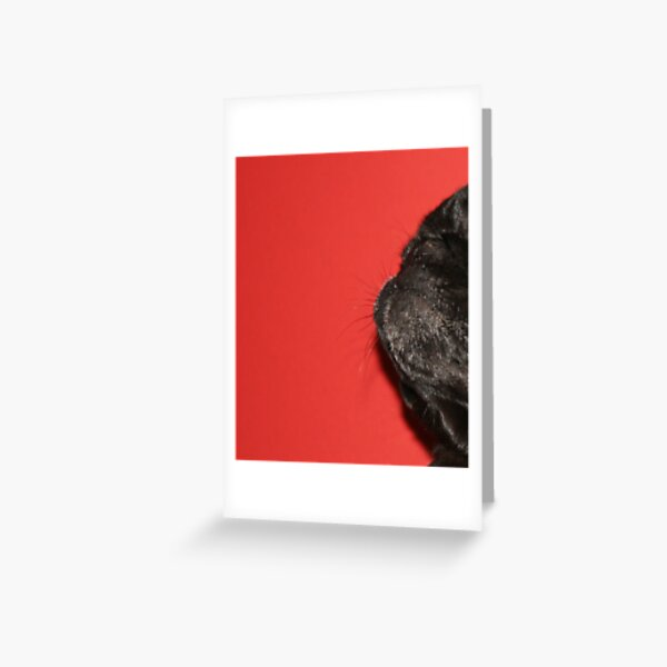 Pug Profile Greeting Card