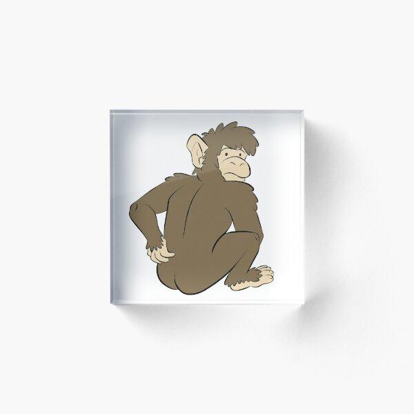 Monkey caught scratching butt Acrylic Block