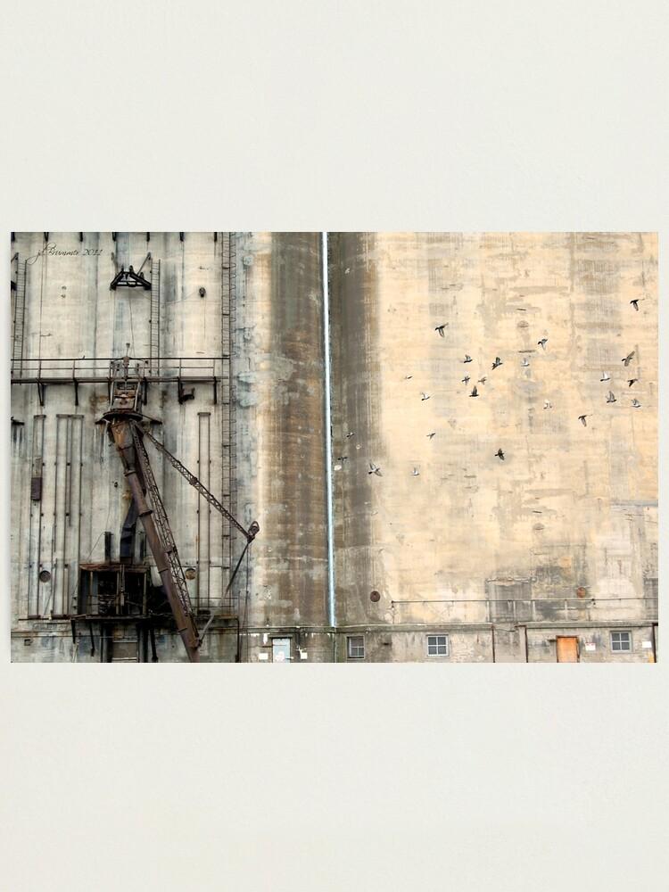 Alternate view of Historically Buffalo Photographic Print
