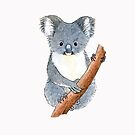 Gorgeous koala - Raising funds for the RSPCA Queensland by Paula Peeters