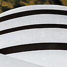 Guggenheim on Steroids by Jen Waltmon