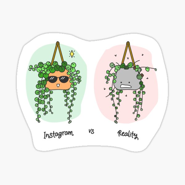 Instagram vs Reality (String of Pearls) Sticker