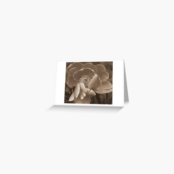 Subdued Greeting Card