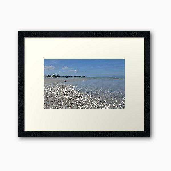 Shell, sand, sea and sky Framed Art Print