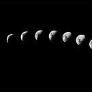Lunar Cycle by R-evolution GFX