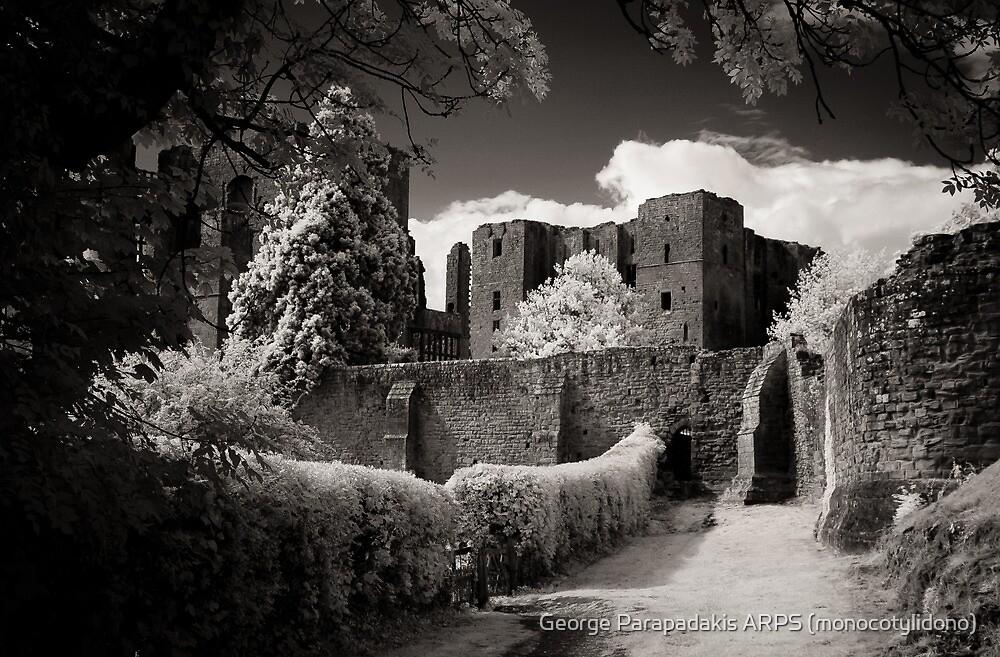 Kenilworth Castle, Warwickshire, UK [IR] by George Parapadakis ARPS (monocotylidono)