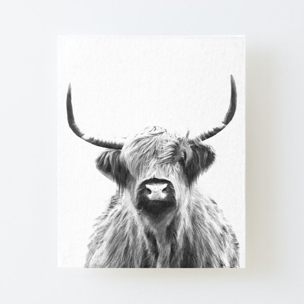 Black and White Highland Cow Canvas Mounted Print