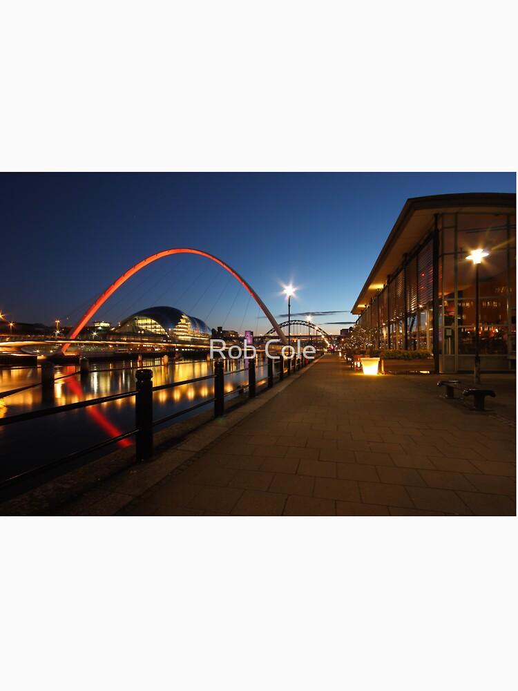Newcastle-Gateshead, Bridges and Quayside at Dusk by robcole