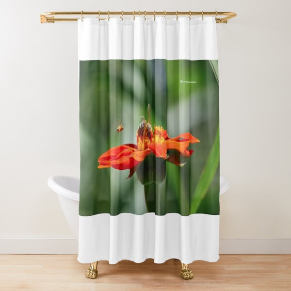 Bee Family Shower Curtain