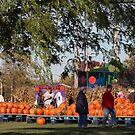 At The Local Pumpkin Farm by kkphoto1