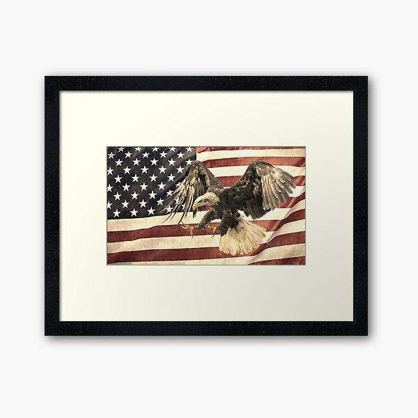 Vintage Eagle and Flag Framed Art Print