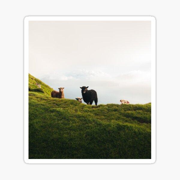 Schaf-Trupp der Färöer Sticker