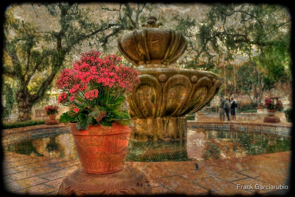 Spanish  Fountain by Frank Garciarubio