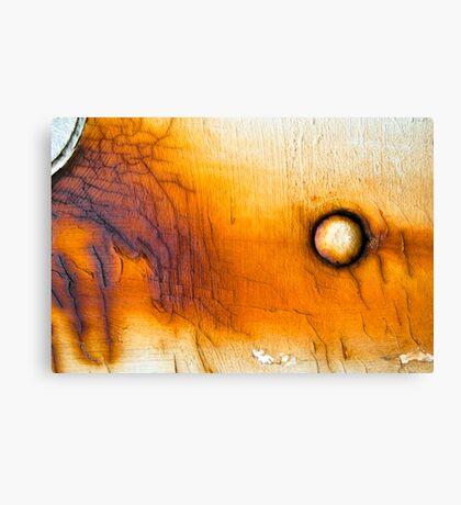 Orbit the Sun Canvas Print