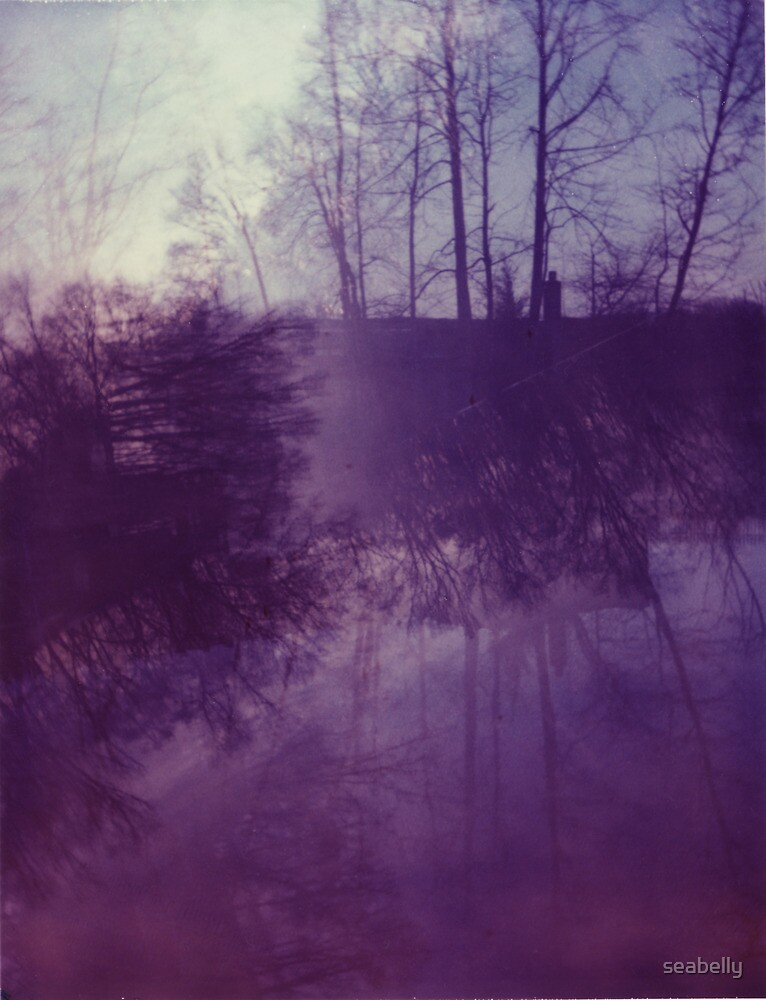 Dreamy Purple Trees by seabelly