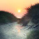 Dunes of Glory ~ Cape May, NJ by JLPPhotos