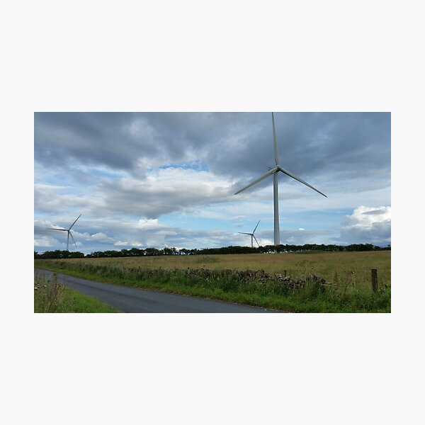 Wind Turbines in a Field Photographic Print