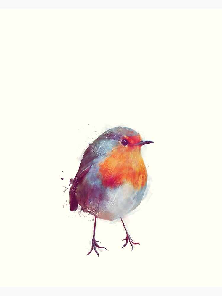 Winter Robin by AmyHamilton