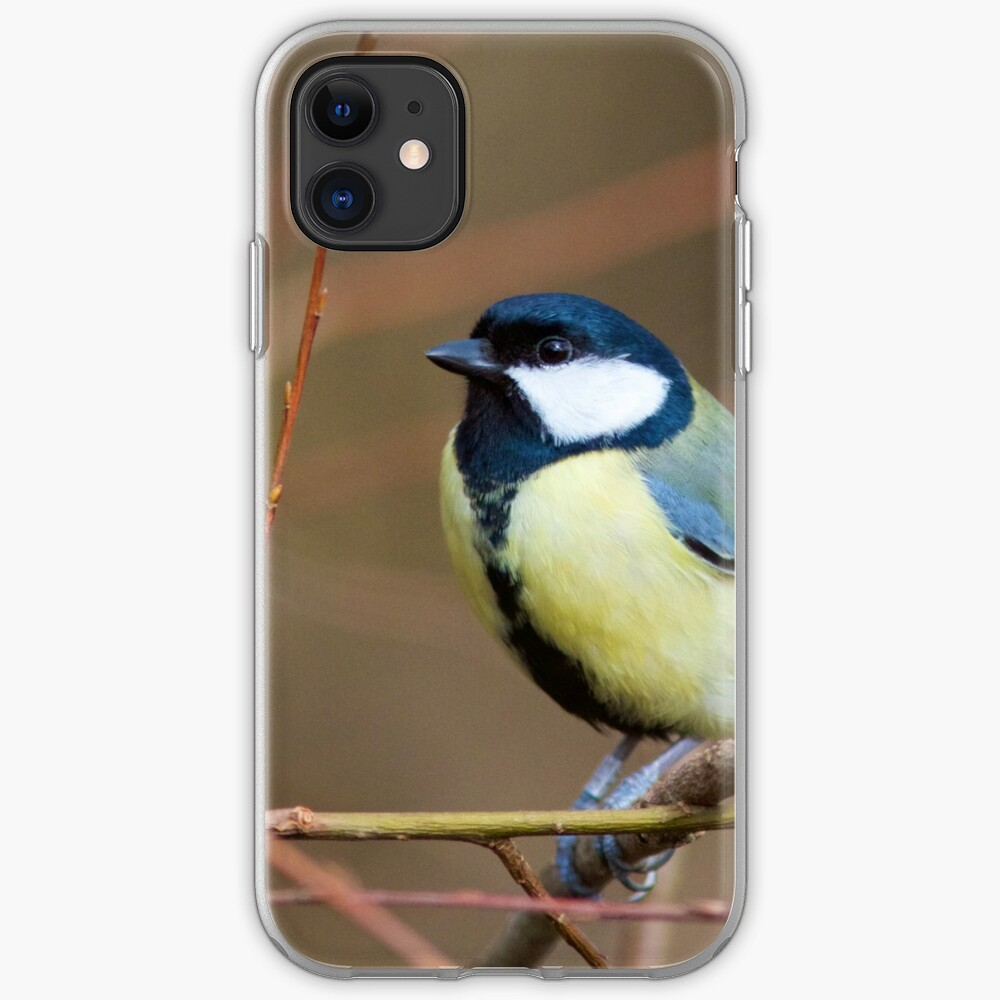Great Tit (Parus Major) Perched in Woodland iPhone Case & Cover