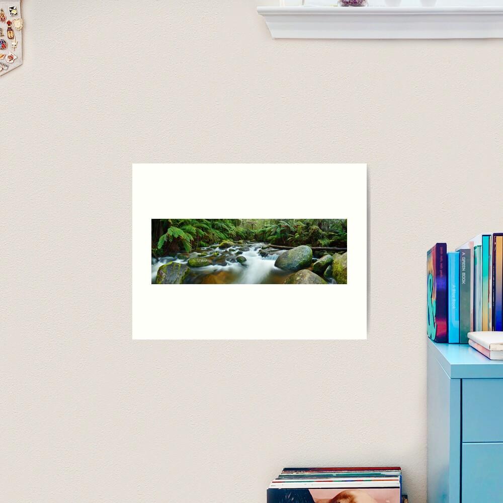 Toorongo River, Gippsland, Victoria, Australia Art Print