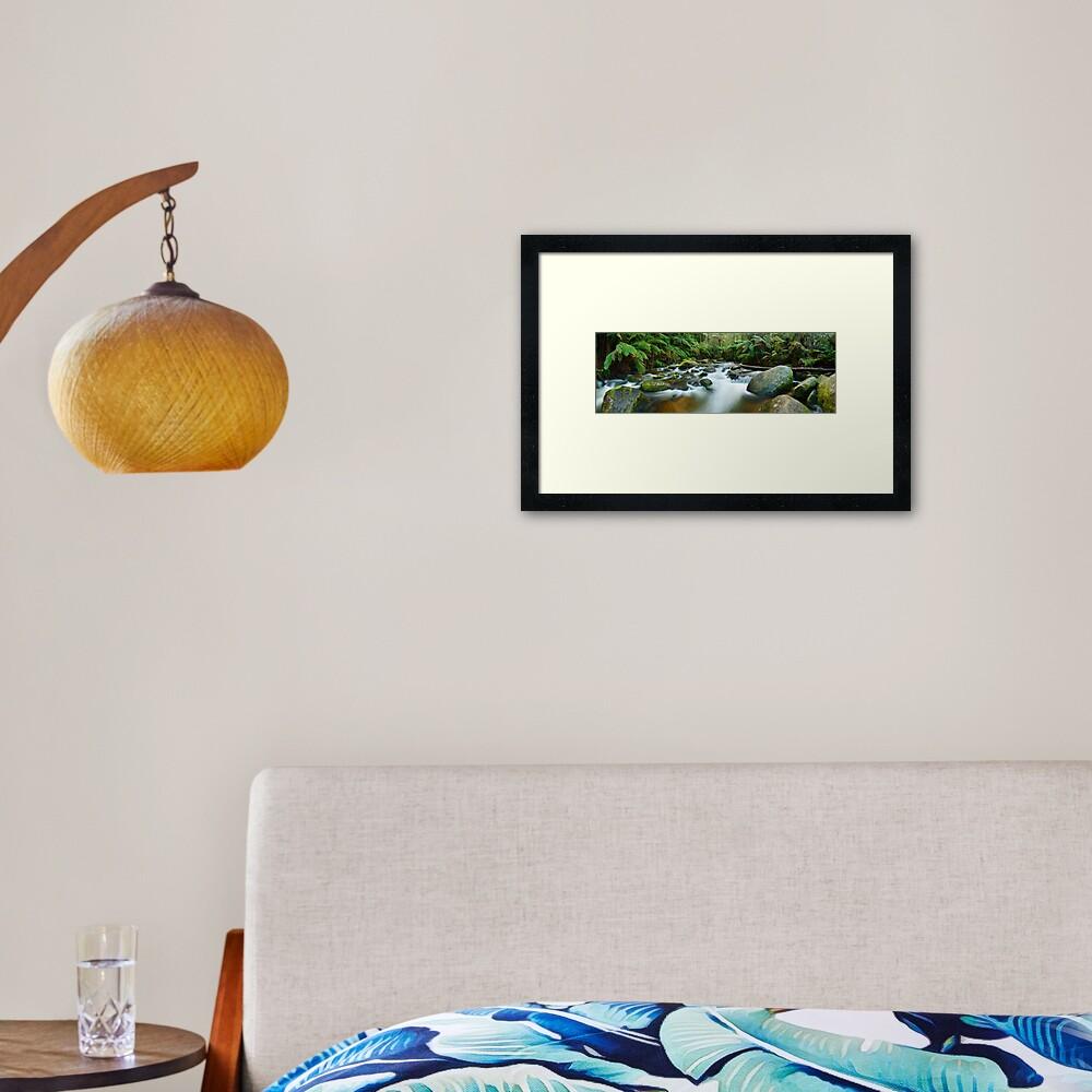 Toorongo River, Gippsland, Victoria, Australia Framed Art Print
