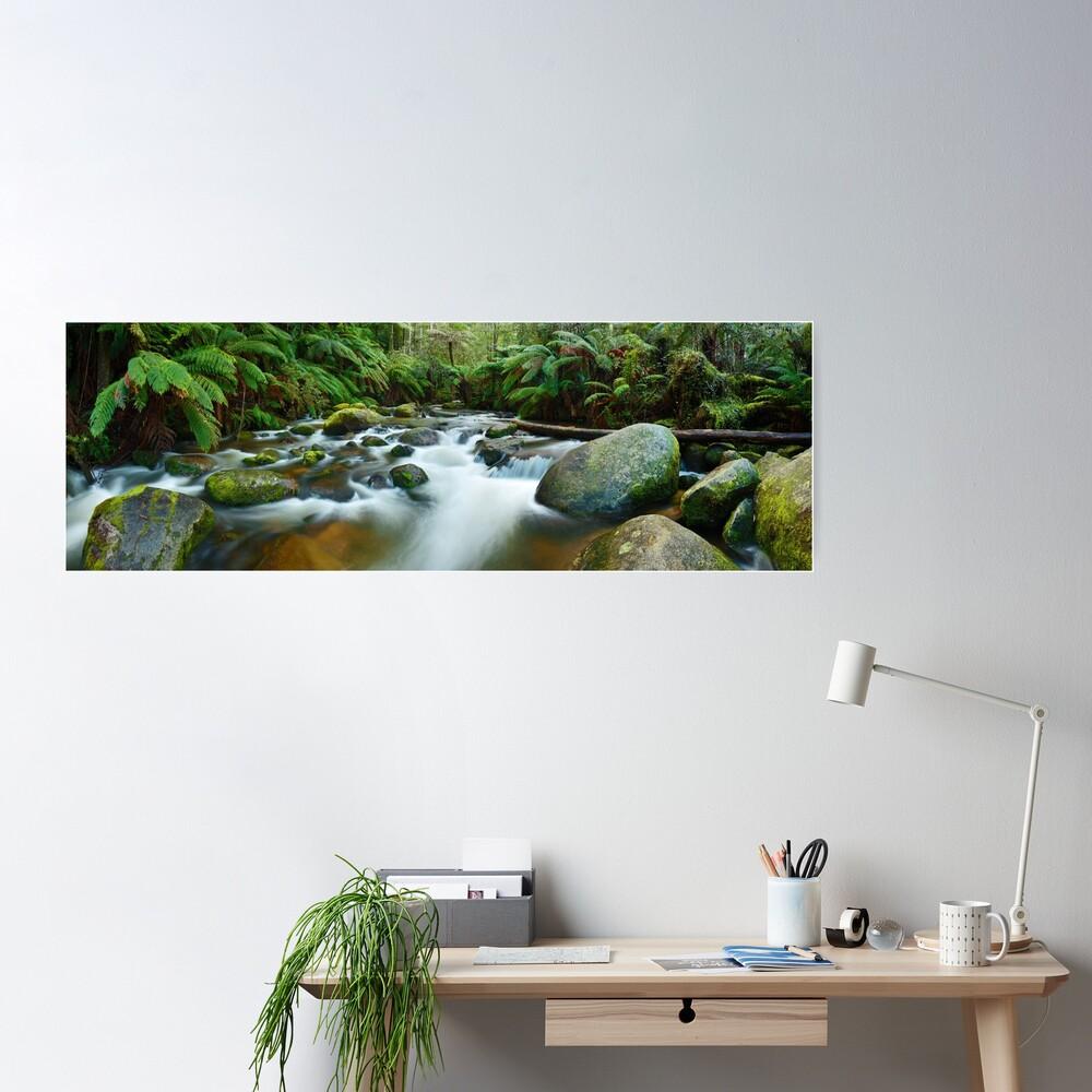 Toorongo River, Gippsland, Victoria, Australia Poster