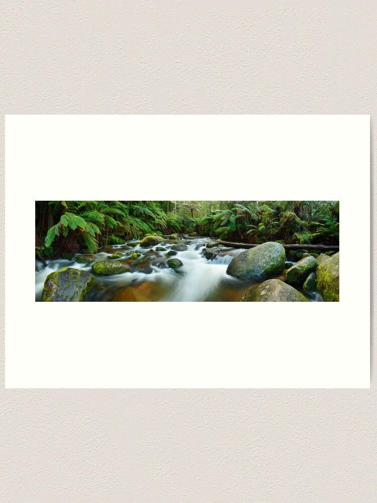 Alternate view of Toorongo River, Gippsland, Victoria, Australia Art Print