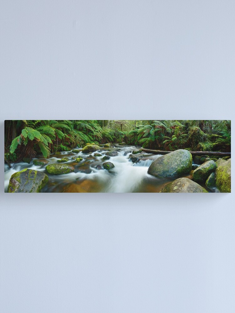 Alternate view of Toorongo River, Gippsland, Victoria, Australia Canvas Print