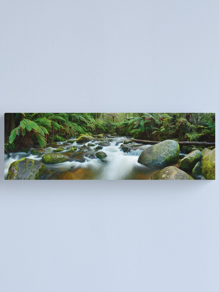 Alternate view of Toorongo River, Gippsland, Victoria, Australia Canvas Print