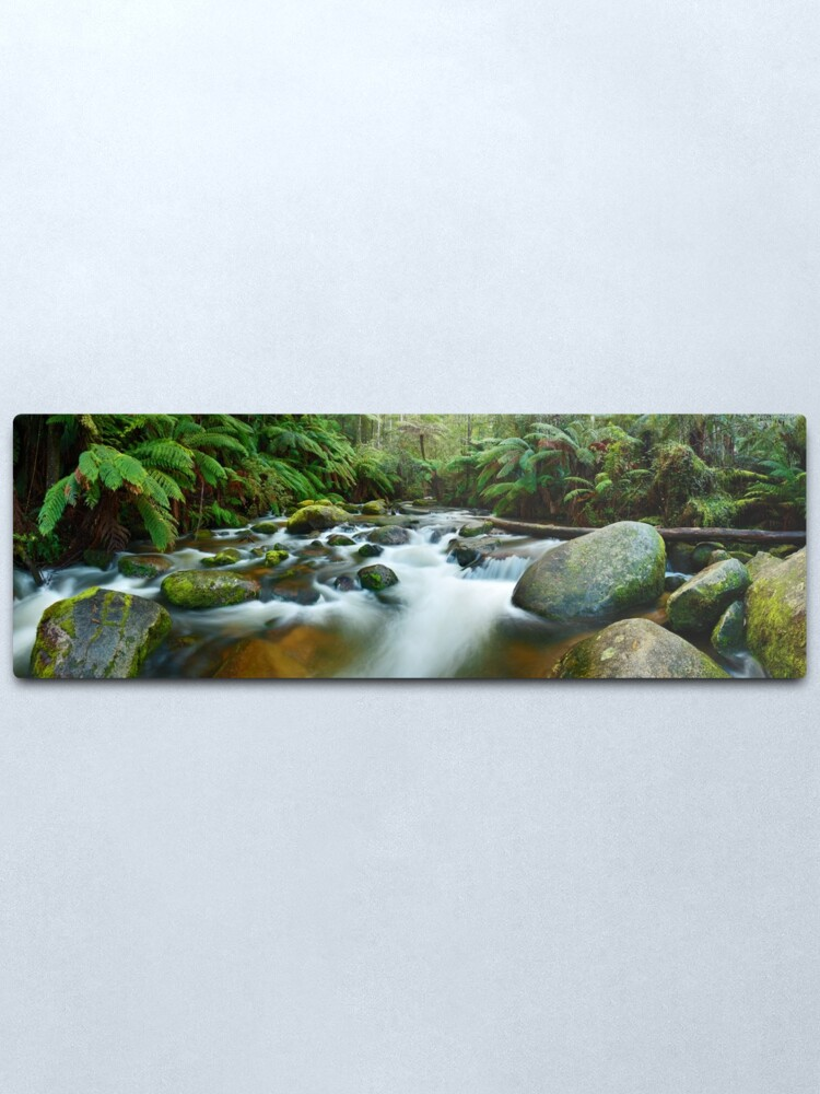 Alternate view of Toorongo River, Gippsland, Victoria, Australia Metal Print