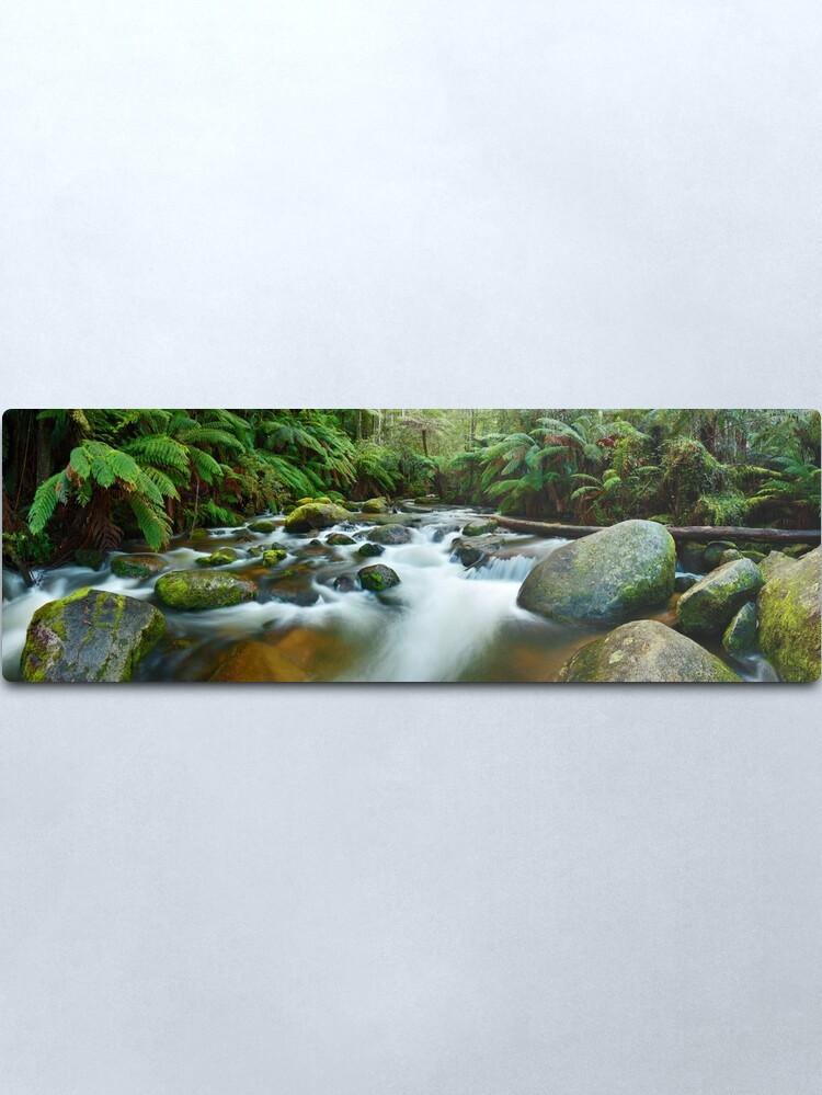 Alternate view of Toorongo River, Gippsland, Victoria, Australia Metal Print