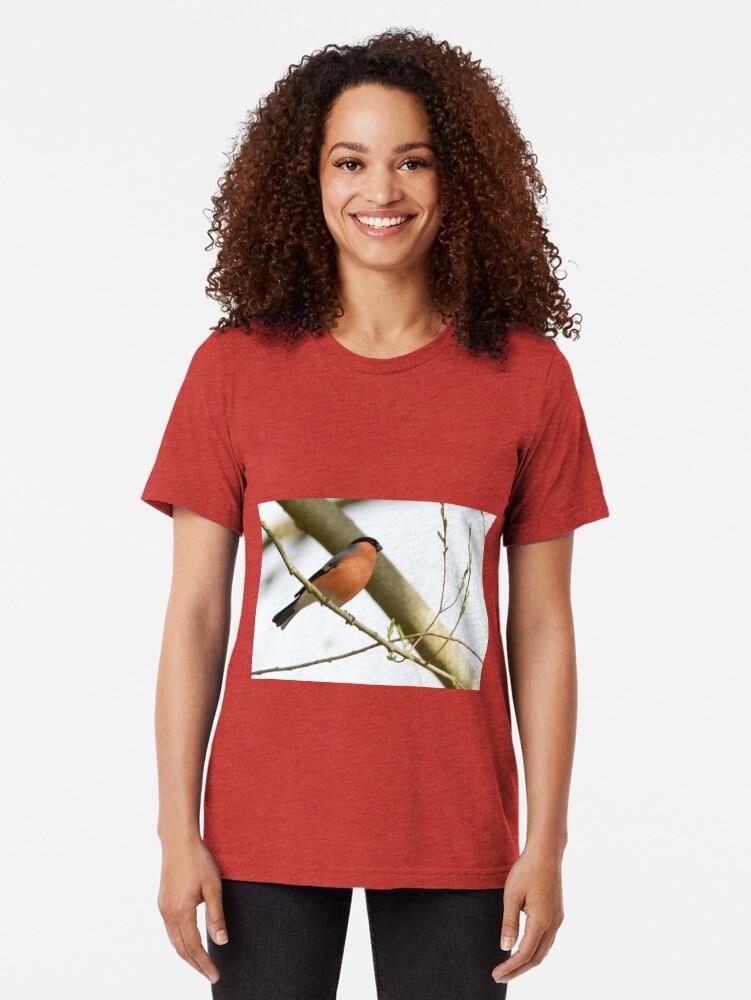 Alternate view of Bullfinch (Pyrrhula pyrrhula) Perched in Woodland Tri-blend T-Shirt