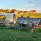 The Old West by Barbara Manis